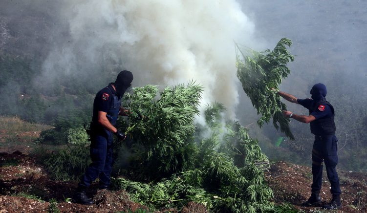 Albania: In Europe's Wild East Cannabis is a Billion-Dollar Business