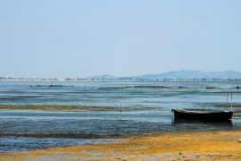 The Impact of the Vlora Airport on Albania's Protected Narta Lagoon