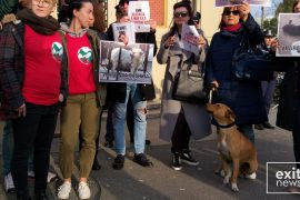 Tirana Citizens Protest Against Killing Of Stray Dogs