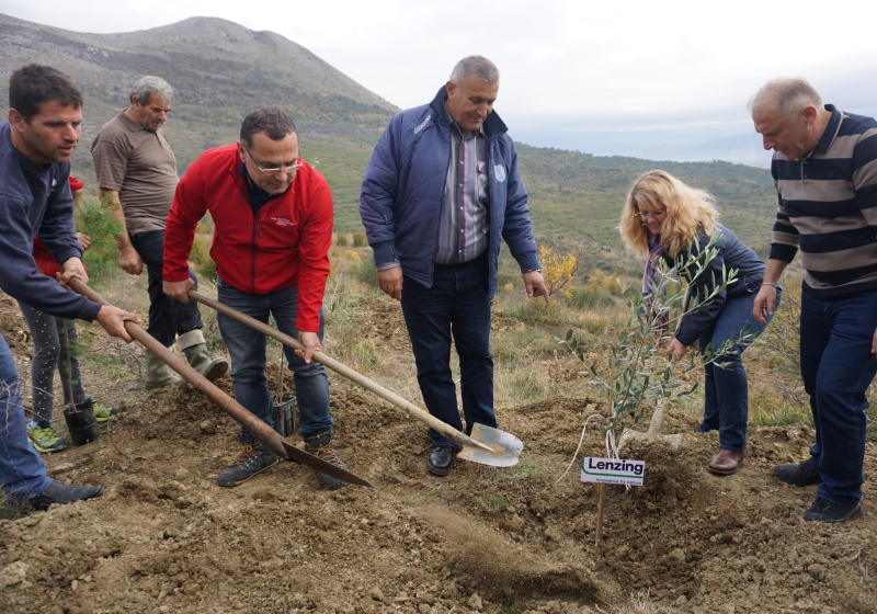 Austrian Company to Recultivate 20 Hectares of Forest in Northern Albania