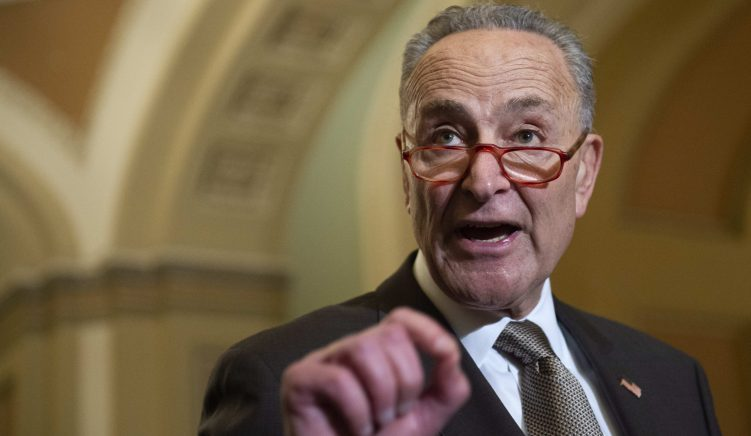 New York Senator Schumer Calls for Albanian Diaspora Vote