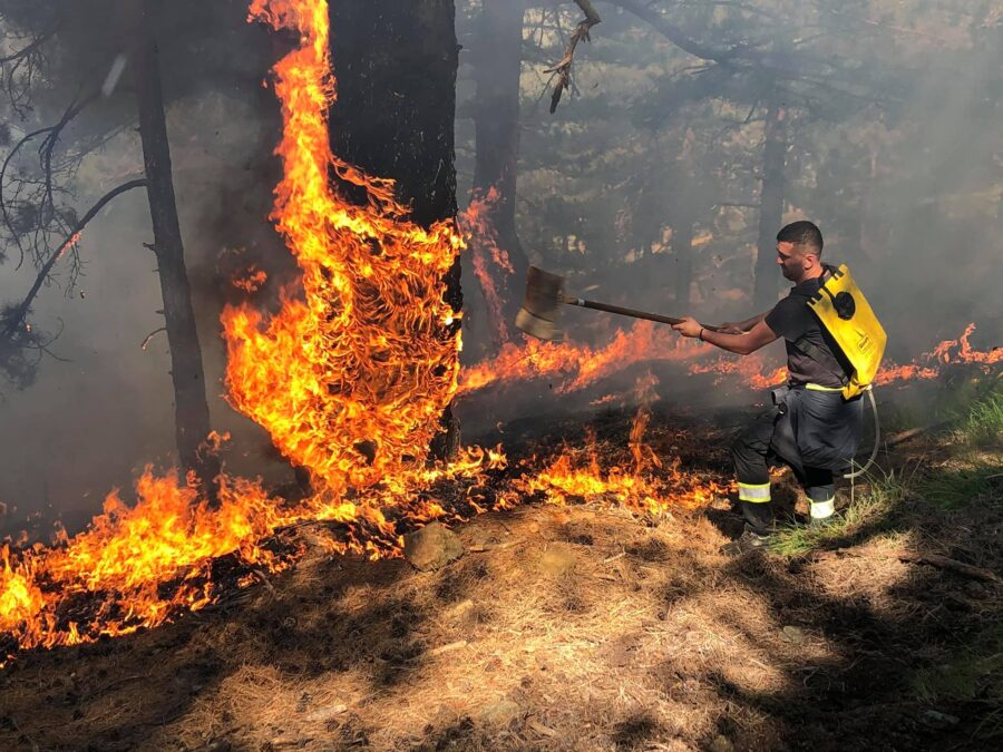 More Forest Fires in Kruja, Thumane, and Shijak