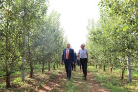 Albanian President Calls for Focus on Agritourism and Local Products
