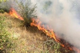 Three Large Fires in as Many Days in Tirana and Elbasan