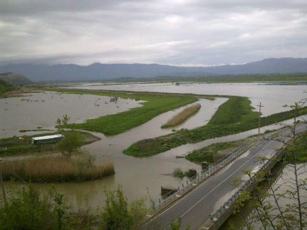 Heavy Rains Cause Flooding in Shkodra and Lezhe
