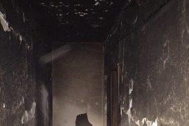 Berisha: Janë djegur 49 dosje të krimeve të rënda