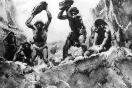 Rritja e politikës së njeriut shpellar