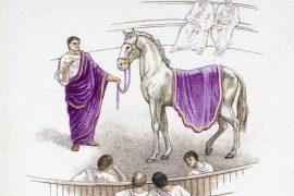 Kali i Perandorit Kaligula në Kavajë