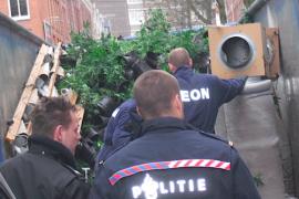Prokurorja holandeze: Shqiptarët gjithnjë e më të përfshirë në krim