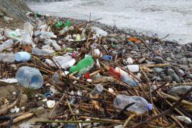 Durrës, mbeturinat pushtojnë bregdetin, njësitë administrative nuk përballojnë dot situatën