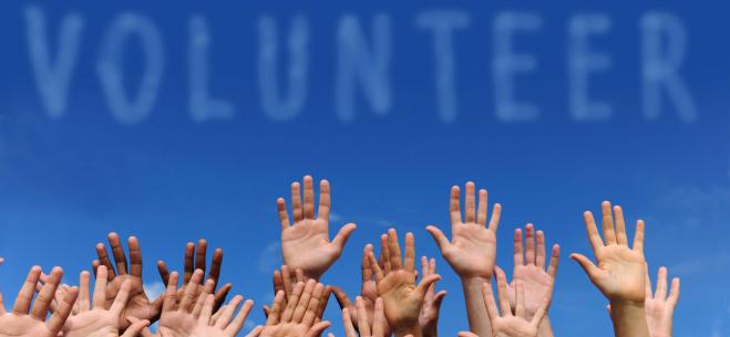 Ligji i Vullnetarizmit, dita më pas