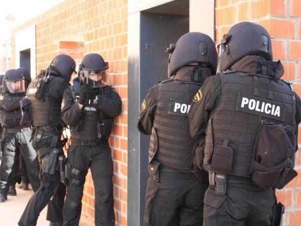 Lufta e policive të huaja kundër bandave shqiptare