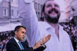 Hirkokervusi i Salvinit dhe Shqipëria