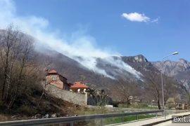 Zjarret e marsit, Qeveria —  Të qëllimshëm njësoj si shirat e prillit