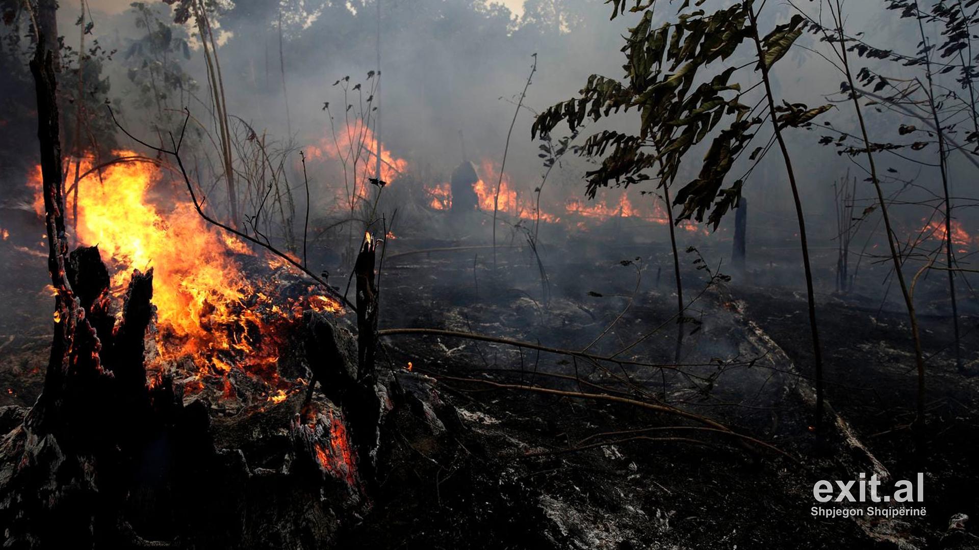Si u manipulua G7 për zjarret në Amazonë