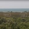 100 vjet vjedhje e tokës publike: historia e grabitjes së mijëra hektarëve në Gjirin e Lalzit