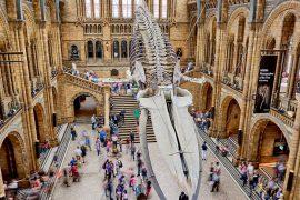 Në kohën e karantinës: 12 muzeume botërore që mund t'i vizitoni virtualisht