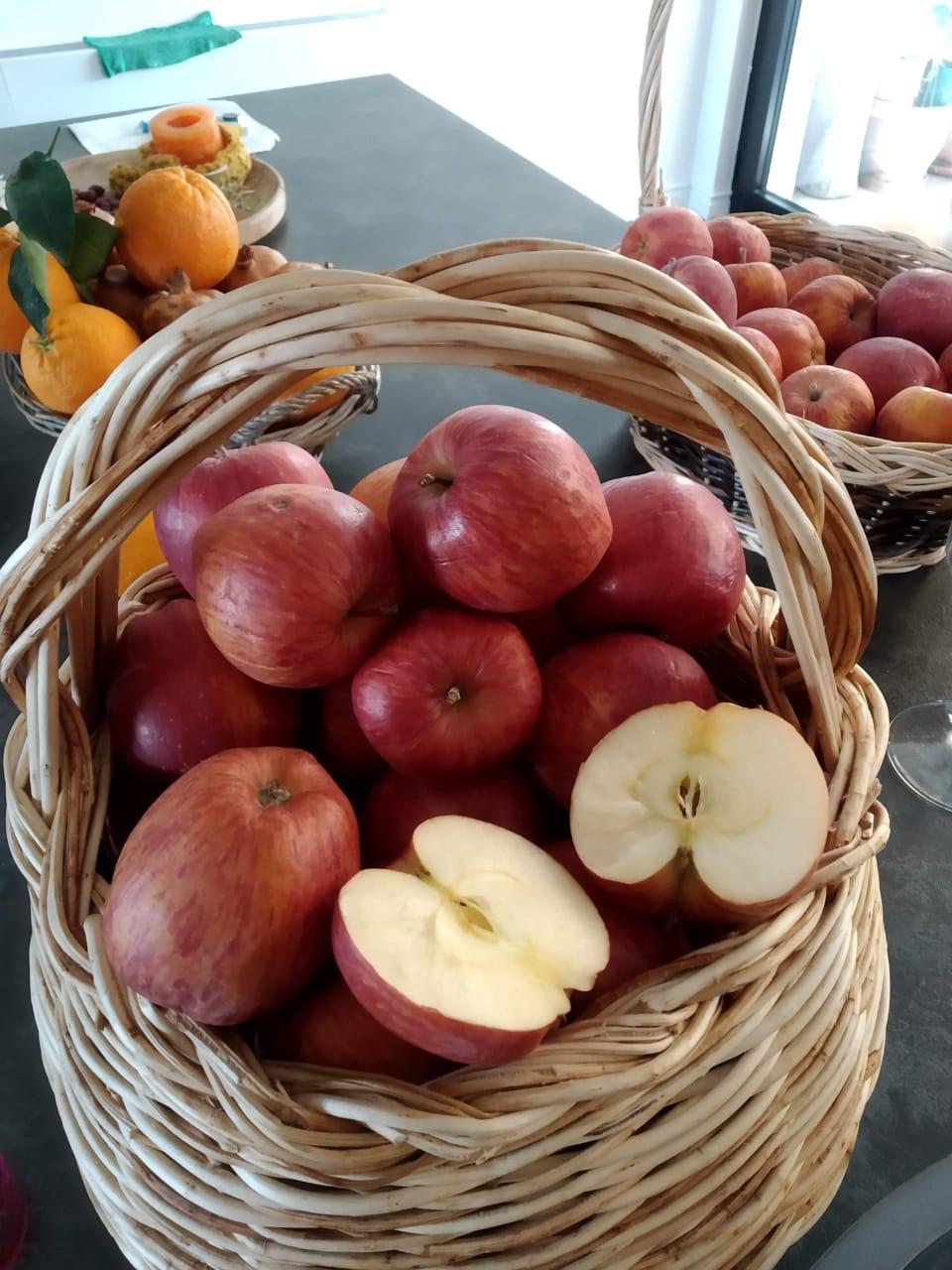 Petulla me mollë për një pasdite të këndshme me fëmijët