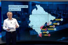 Shqiptarët në Malin e Zi, arsyet e ndarjes në disa parti